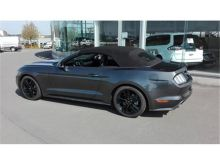 Ford Mustang Convertible 2.3 EcoBoost 317ch